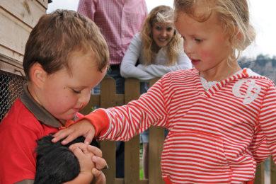 Bauernhofurlaub & Familienurlaub in Radstadt, Unterhagmooshof