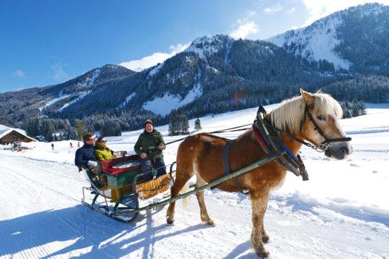Pferdeschlittenfahrten im Ski- & Winterurlaub in Radstadt, Salzburger Land